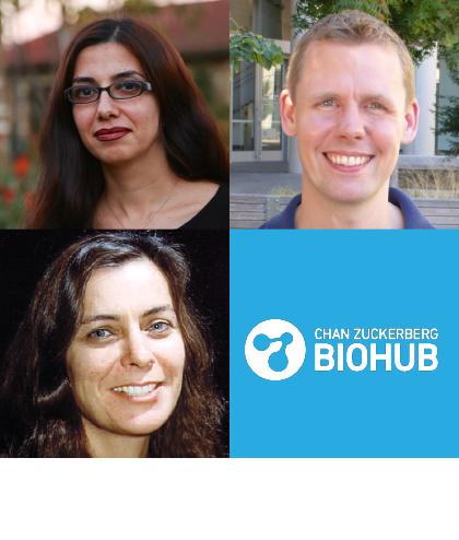 Biohub ADI Awardees
