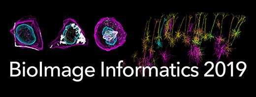 BioImage Informatics