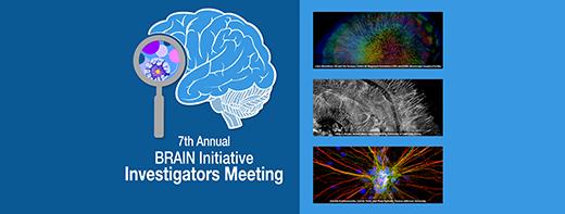 2021 BRAIN Initiative Investigators Meeting