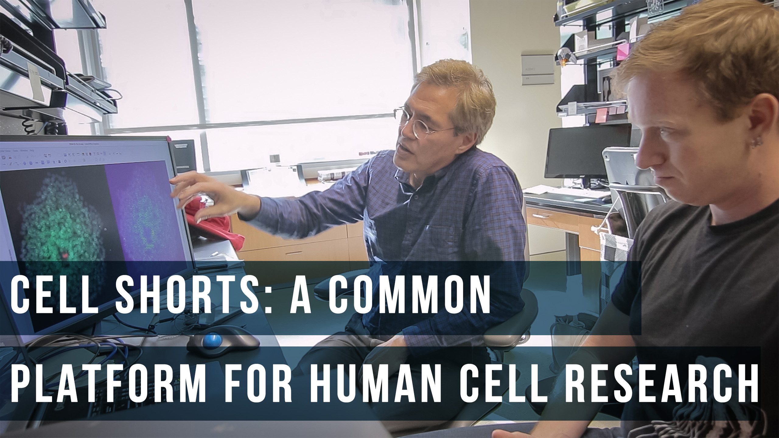 Cell Stories: A Common Platform for Human Cell Research
