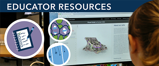 New cell biology materials for educators