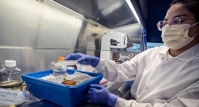 3 immune mysteries of COVID-19
