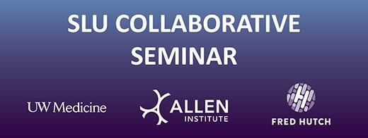 July SLU Collaborative Seminar met virtually