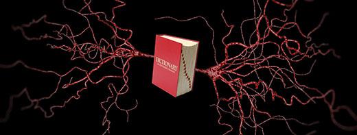 How do you name a neuron?