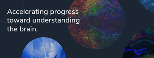 brain-map.org community forum